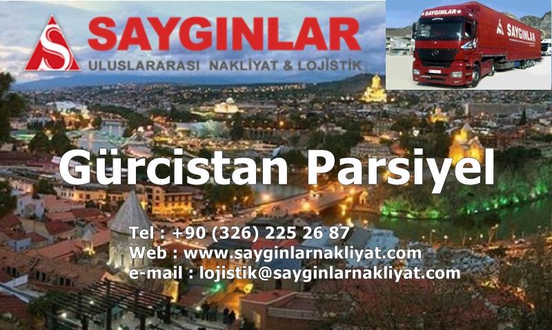 gurcistan-parsiyel-nakliyat