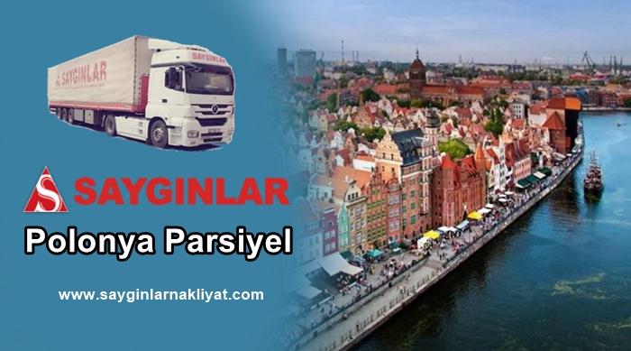Polonya Parsiyel